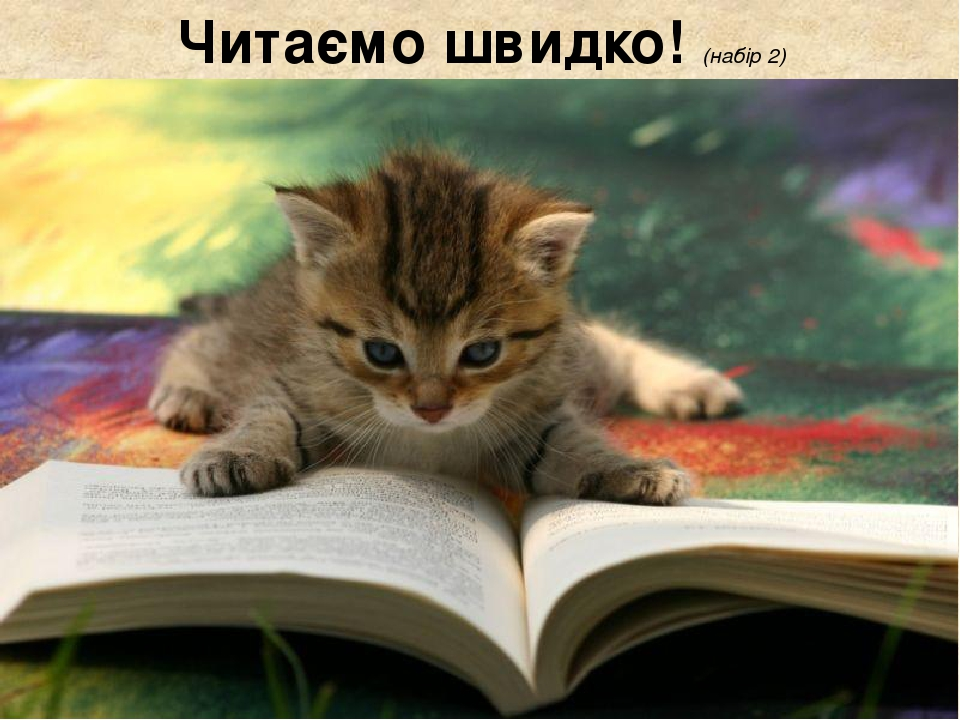 Читаємо швидко! (набір 2)