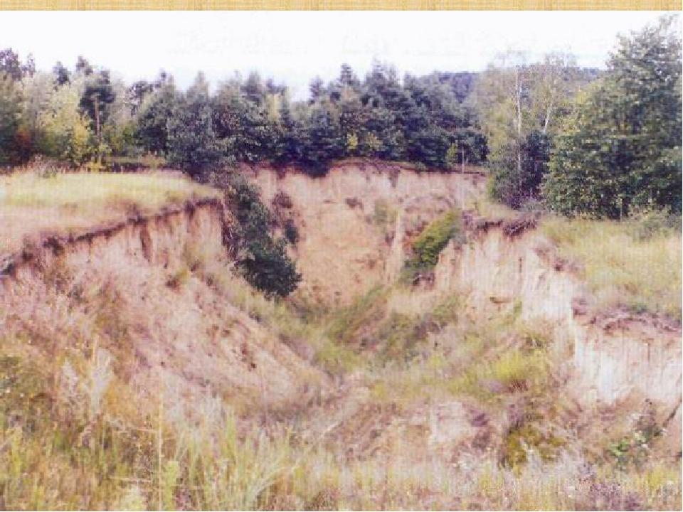 Яр — глибока довга западина (переважно з крутими або прямовисними схилами), що утворилася внаслідок розмиву пухких осадових порід тимчасовими поток...