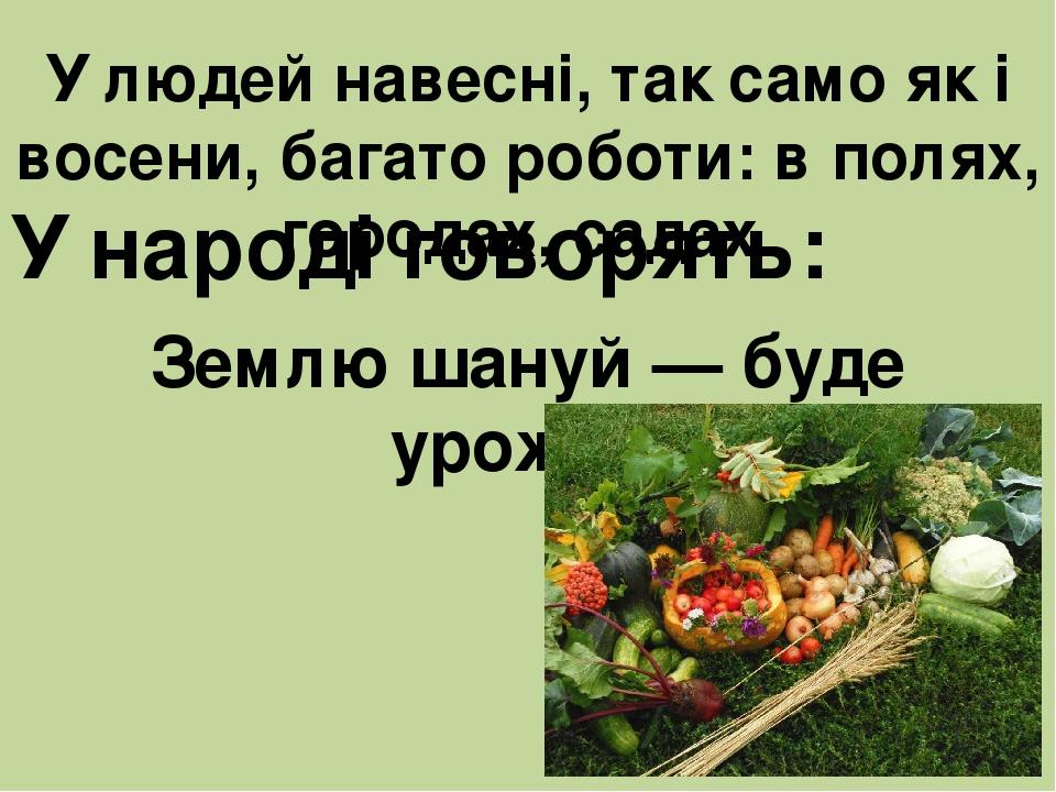 У людей навесні, так само як і восени, багато роботи: в полях, городах, садах. У народі говорять: Землю шануй — буде урожай.