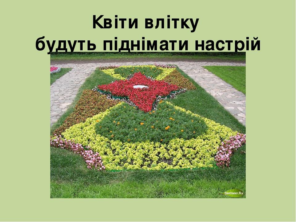 Квіти влітку будуть піднімати настрій людям.