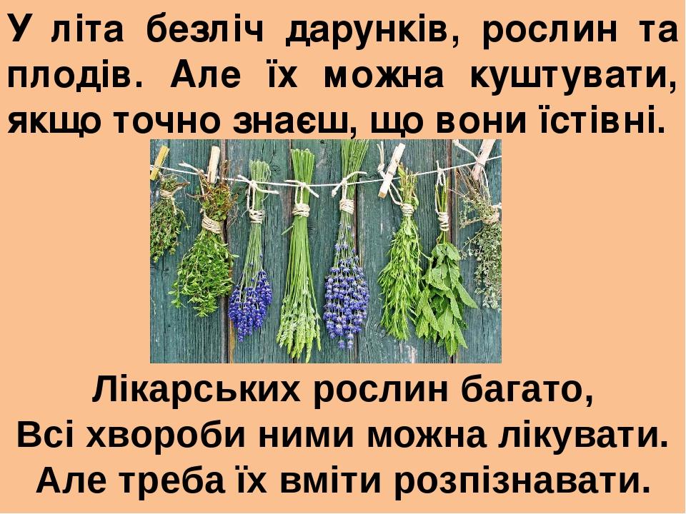 У літа безліч дарунків, рослин та плодів. Але їх можна куштувати, якщо точно знаєш, що вони їстівні. Лікарських рослин багато, Всі хвороби ними мож...