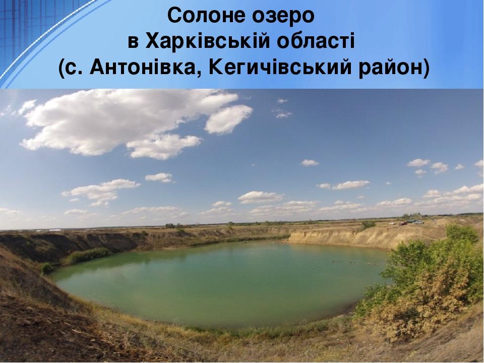 Солоне озеро в Харківській області (с. Антонівка, Кегичівський район)