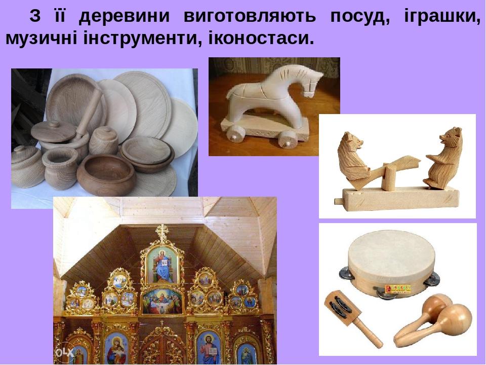 З її деревини виготовляють посуд, іграшки, музичні інструменти, іконостаси.