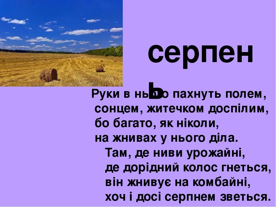 Руки в нього пахнуть полем, сонцем, житечком доспілим, бо багато, як ніколи, на жнивах у нього діла. Там, де ниви урожайні, де дорідний колос гнеть...