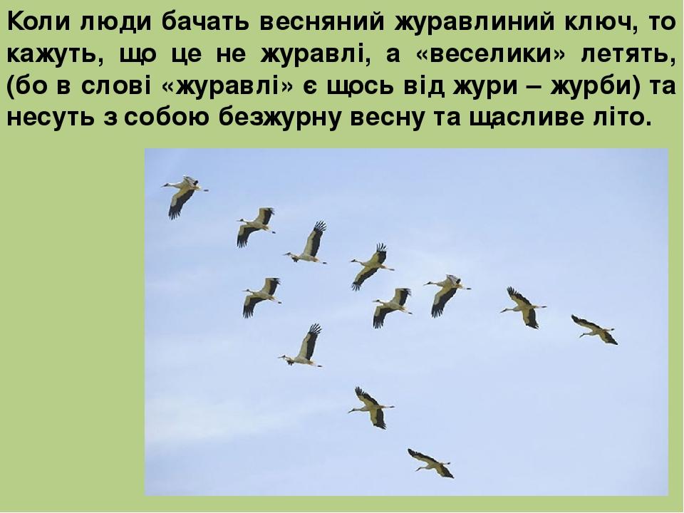 Коли люди бачать весняний журавлиний ключ, то кажуть, що це не журавлі, а «веселики» летять, (бо в слові «журавлі» є щось від жури – журби) та несу...