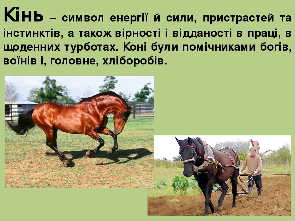 Кінь – символ енергії й сили, пристрастей та інстинктів, а також вірності і відданості в праці, в щоденних турботах. Коні були помічниками богів, в...