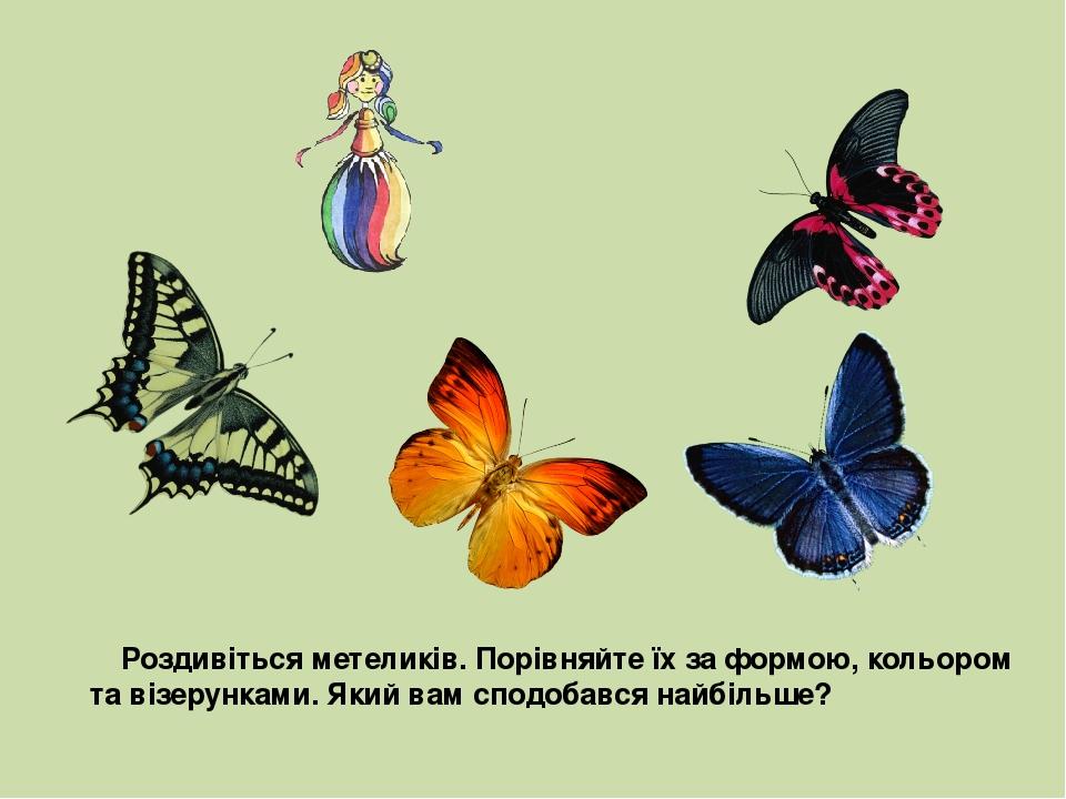 Роздивіться метеликів. Порівняйте їх за формою, кольором та візерунками. Який вам сподобався найбільше?