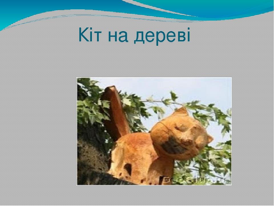 Кіт на дереві