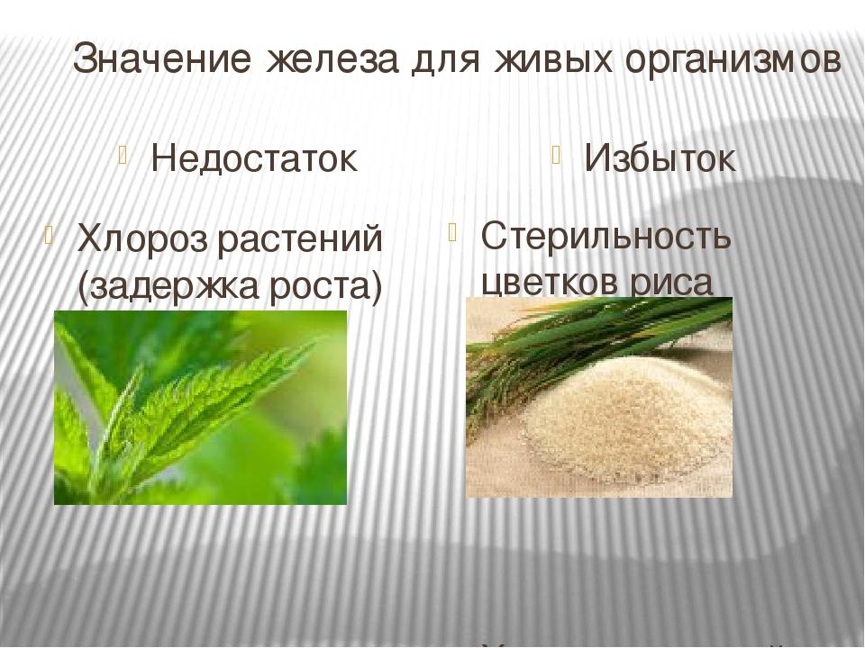 Значение железа для живых организмов Недостаток Избыток Хлороз растений (задержка роста) Стерильность цветков риса Хлороз растений