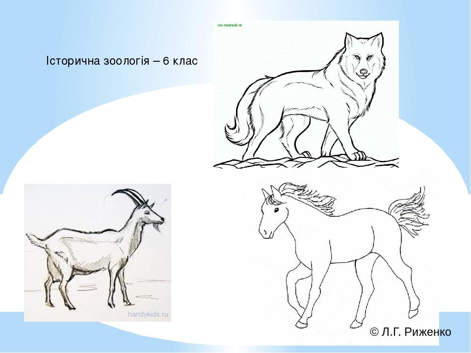 Історична зоологія – 6 клас © Л.Г. Риженко