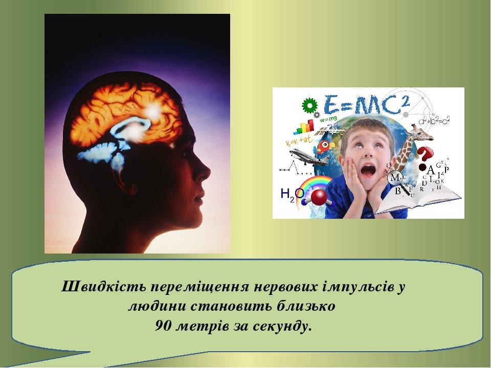 Швидкість переміщення нервових імпульсів у людини становить близько 90 метрів за секунду.