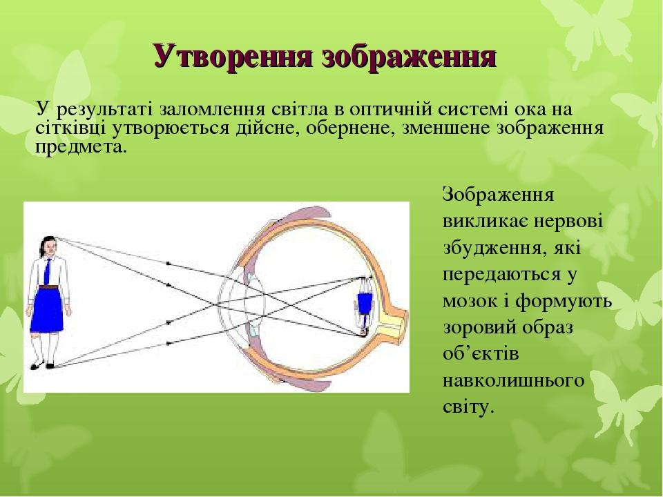 У результаті заломлення світла в оптичній системі ока на сітківці утворюється дійсне, обернене, зменшене зображення предмета. Зображення викликає н...