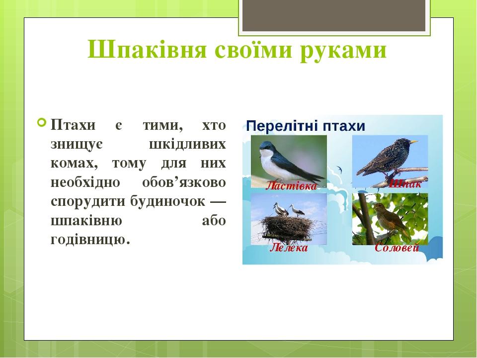 Шпаківня своїми руками Птахи є тими, хто знищує шкідливих комах, тому для них необхідно обов'язково спорудити будиночок — шпаківню або годівницю.