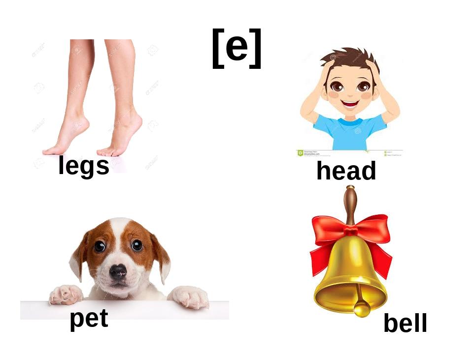 [e] legs head pet bell