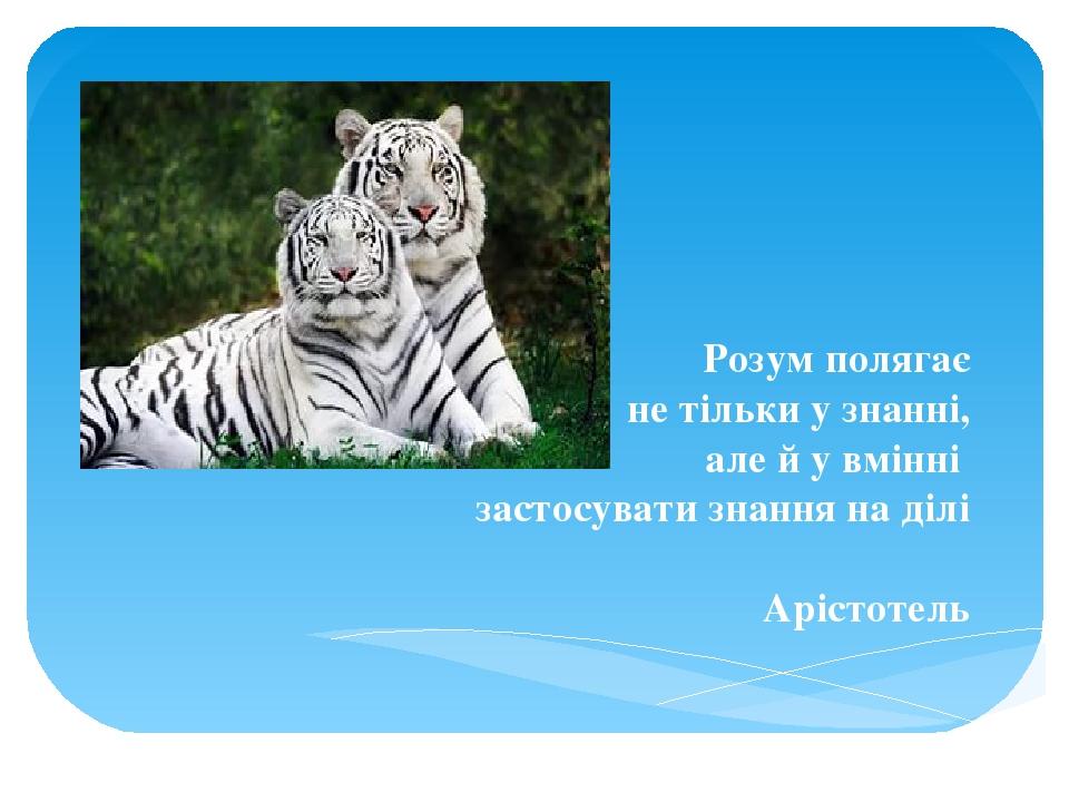 Розум полягає не тільки у знанні, але й у вмінні застосувати знання на ділі Арістотель
