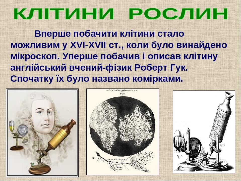 Вперше побачити клітини стало можливим у ХVІ-ХVІІ ст., коли було винайдено мікроскоп. Уперше побачив і описав клітину англійський вчений-фізик Робе...
