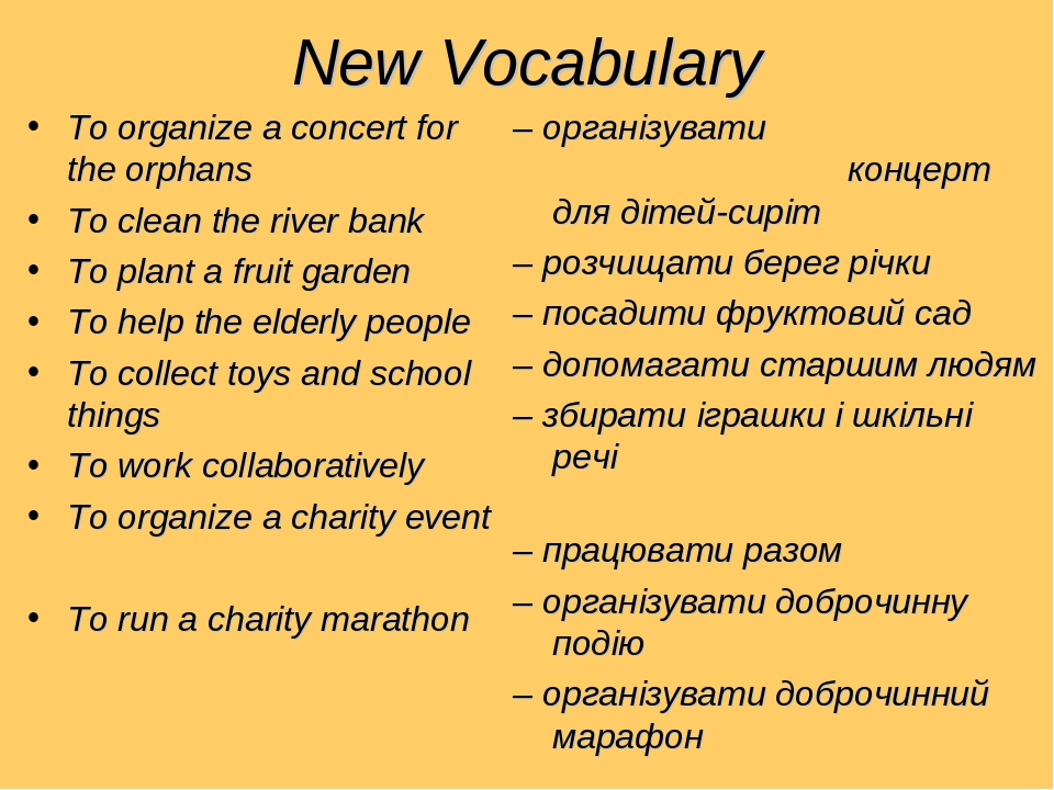New Vocabulary To organize a concert for the orphans To clean the river bank To plant a fruit garden To help the elderly people To collect toys and...
