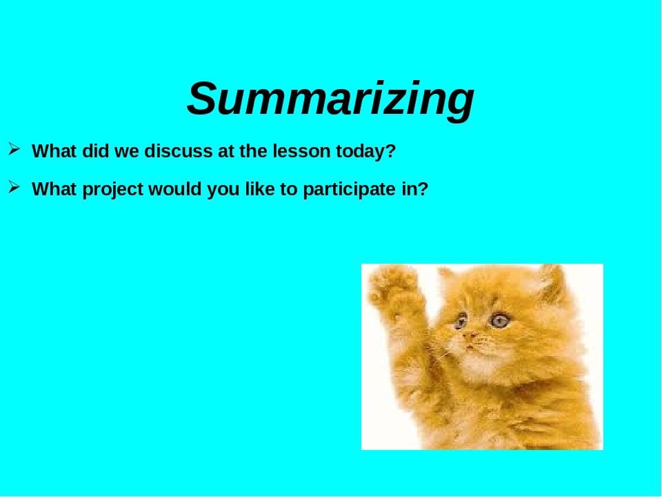 Summarizing Summarizing What did we discuss at the lesson today? What project would you like to participate in?