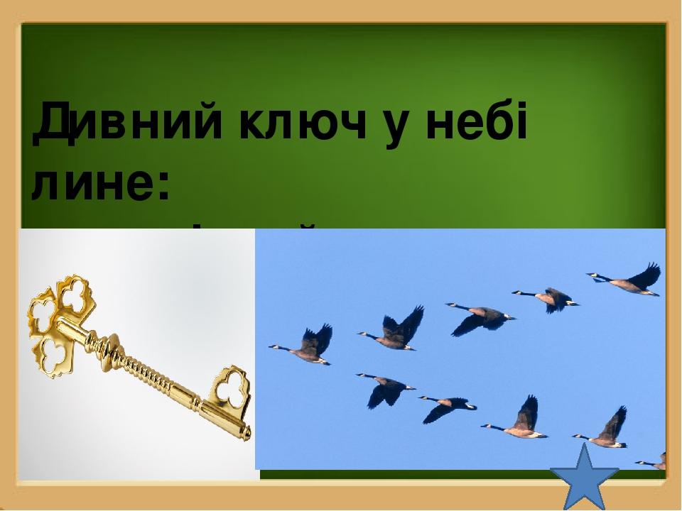 Дивний ключ у небі лине: не залізний, а пташиний.