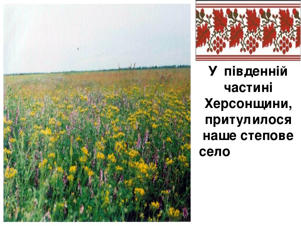 У південній частині Херсонщини, притулилося наше степове село Демꞌянівка..