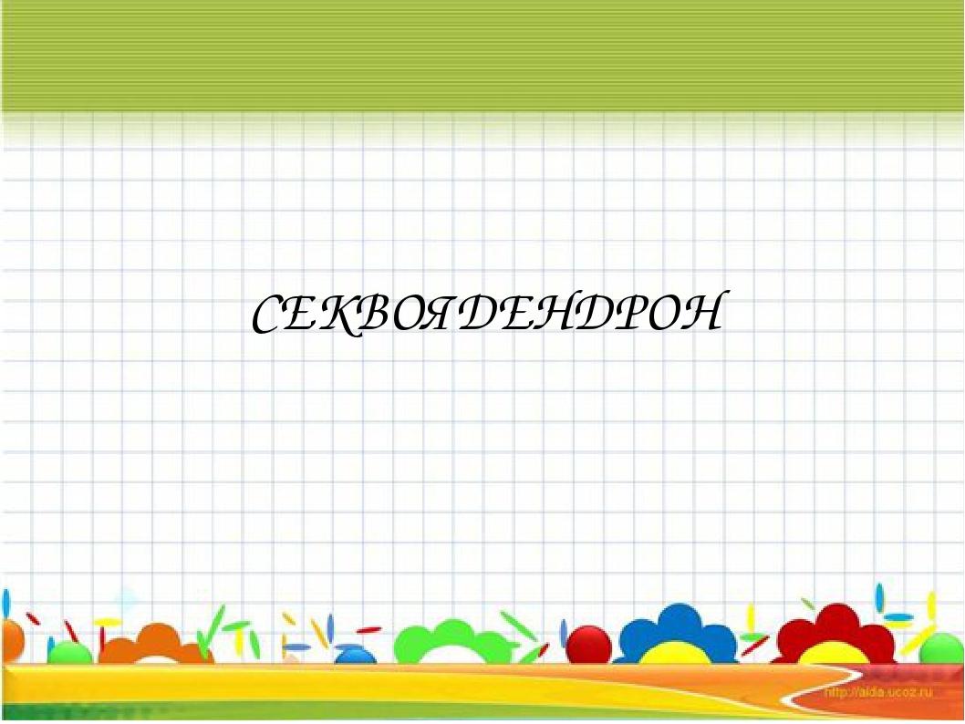 СЕКВОЯДЕНДРОН