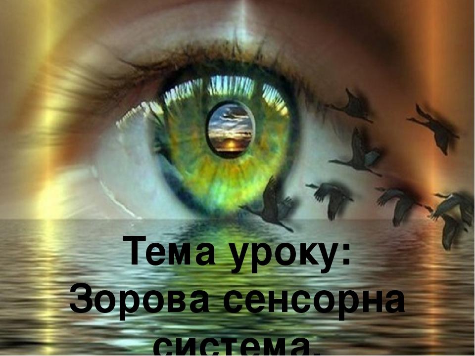 Тема уроку: Зорова сенсорна система. Будова ока.