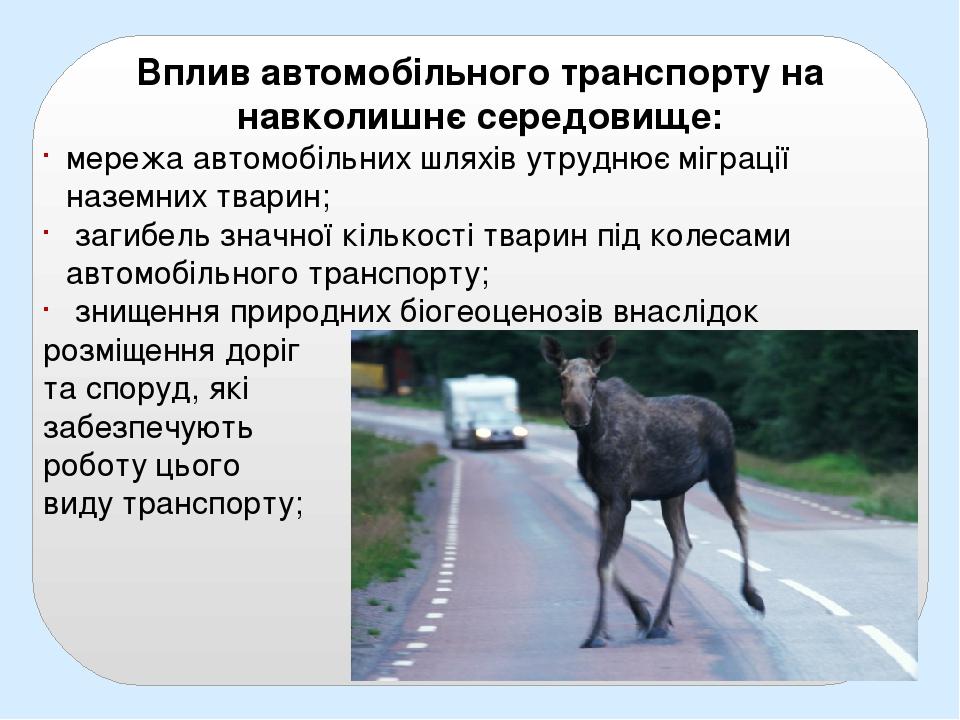 Вплив автомобільного транспорту на навколишнє середовище: мережа автомобільних шляхів утруднює міграції наземних тварин; загибель значної кількості...