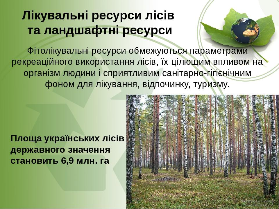 Лікувальні ресурси лісів та ландшафтні ресурси Фітолікувальні ресурси обмежуються параметрами рекреаційного використання лісів, їх цілющим впливом ...