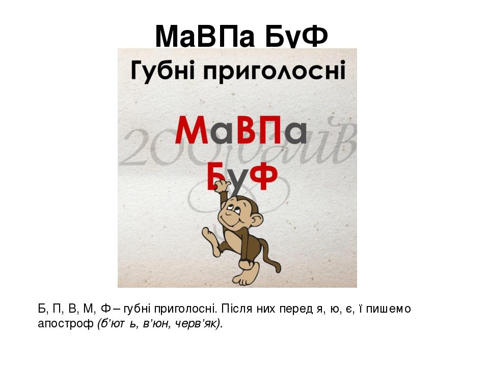МаВПа БуФ Б, П, В, М, Ф – губні приголосні. Після них перед я, ю, є, ї пишемо апостроф(б'ють, в'юн, черв'як).