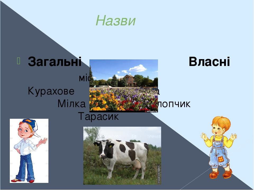 Назви Загальні Власні місто Курахове корова Мілка хлопчик Тарасик