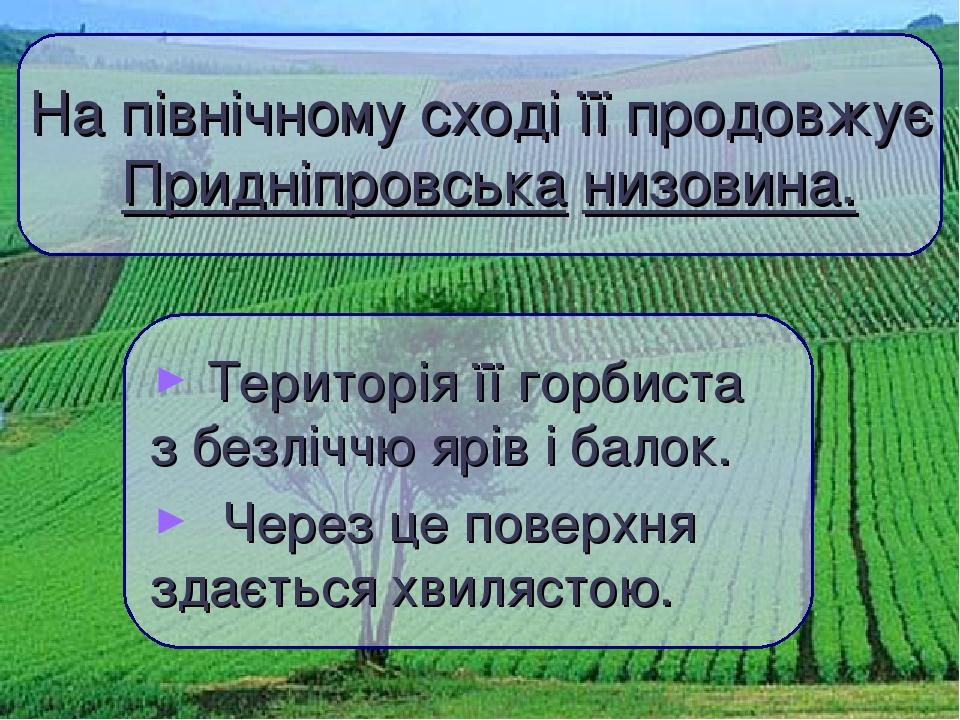 Територія її горбиста з безліччю ярів і балок. Через це поверхня здається хвилястою. На північному сході її продовжує Придніпровська низовина.