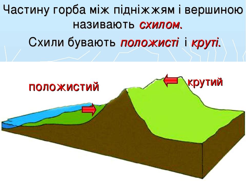 Частину горба між підніжжям і вершиною називають схилом. Схили бувають положисті і круті. положистий крутий