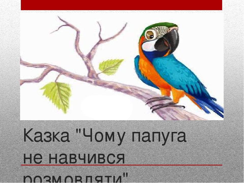 "Казка ""Чому папуга не навчився розмовляти"""