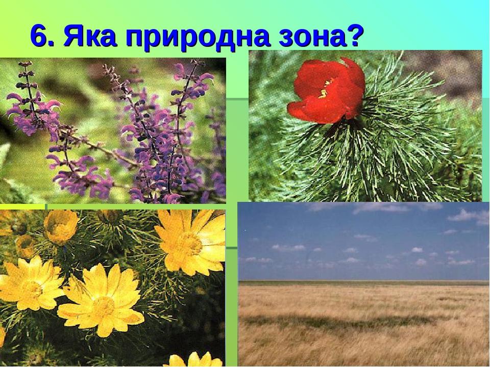 6. Яка природна зона?
