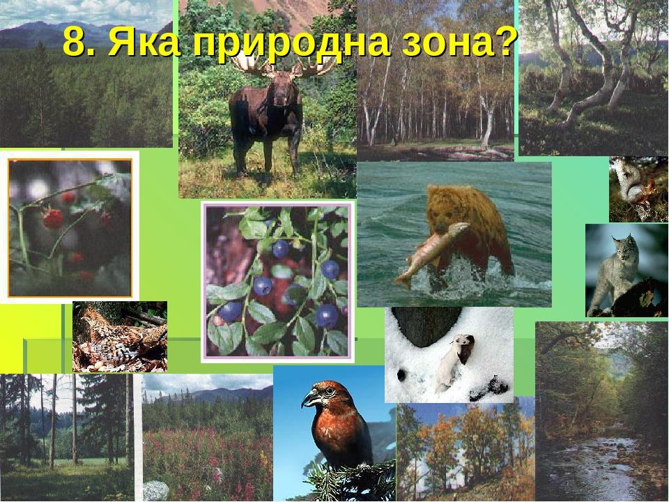 8. Яка природна зона?