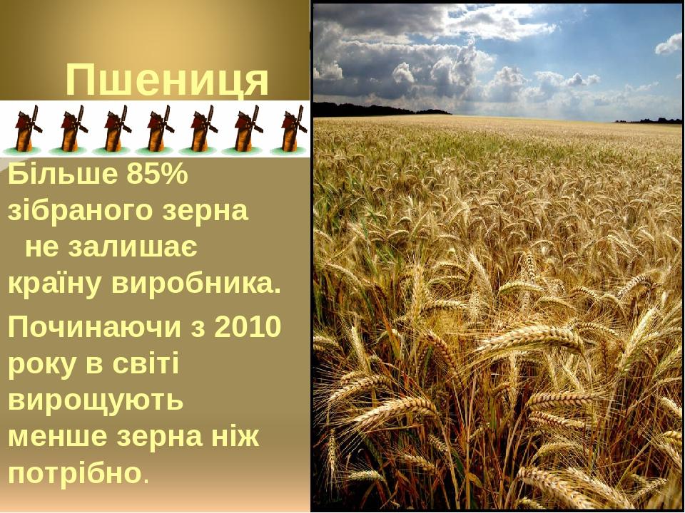 Більше 85% зібраного зерна не залишає країну виробника. Починаючи з 2010 року в світі вирощують менше зерна ніж потрібно.