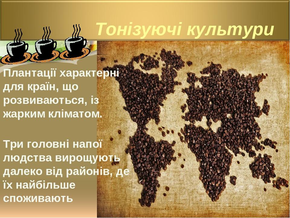 Плантації характерні для країн, що розвиваються, із жарким кліматом. Три головні напої людства вирощують далеко від районів, де їх найбільше спожив...