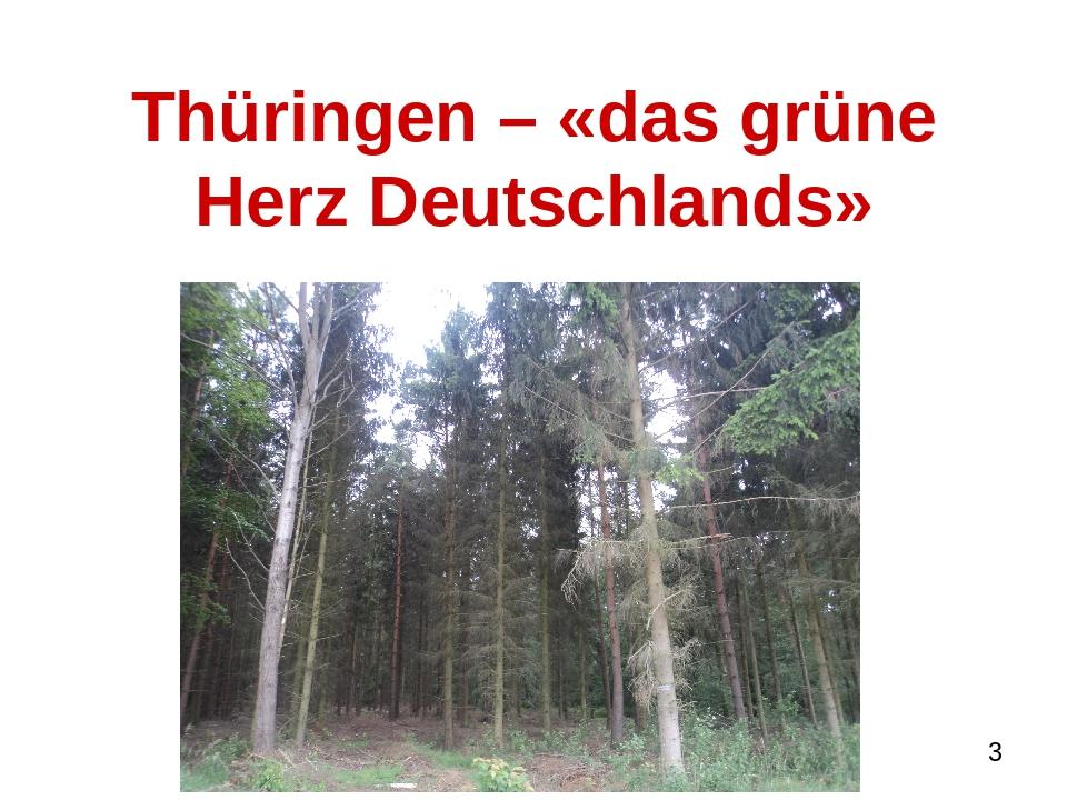 Thüringen – «das grüne Herz Deutschlands»