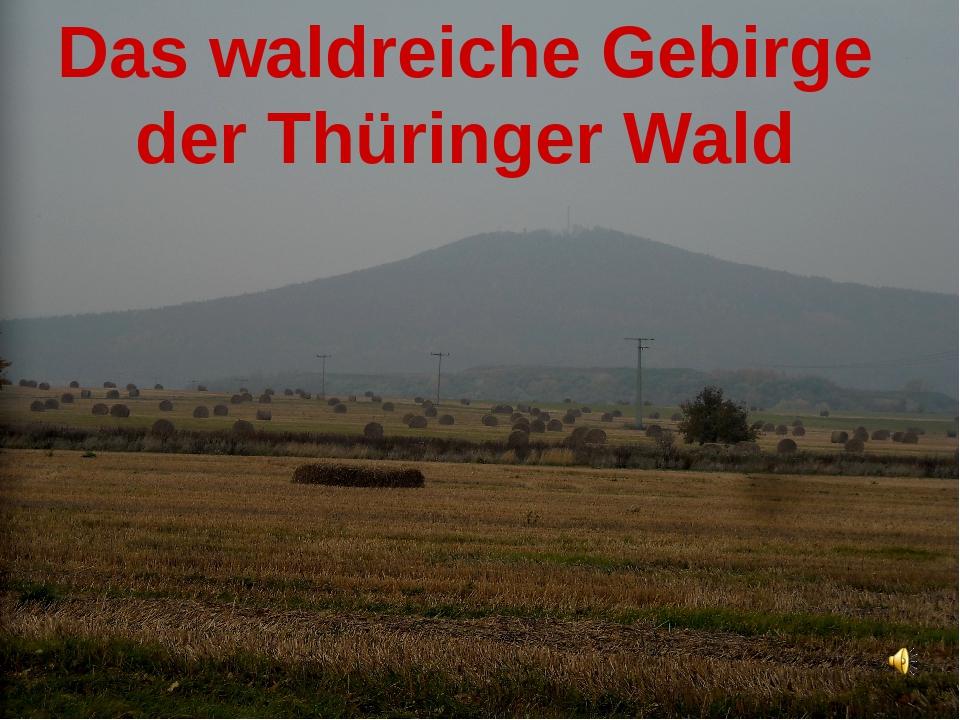 Das waldreiche Gebirge der Thüringer Wald