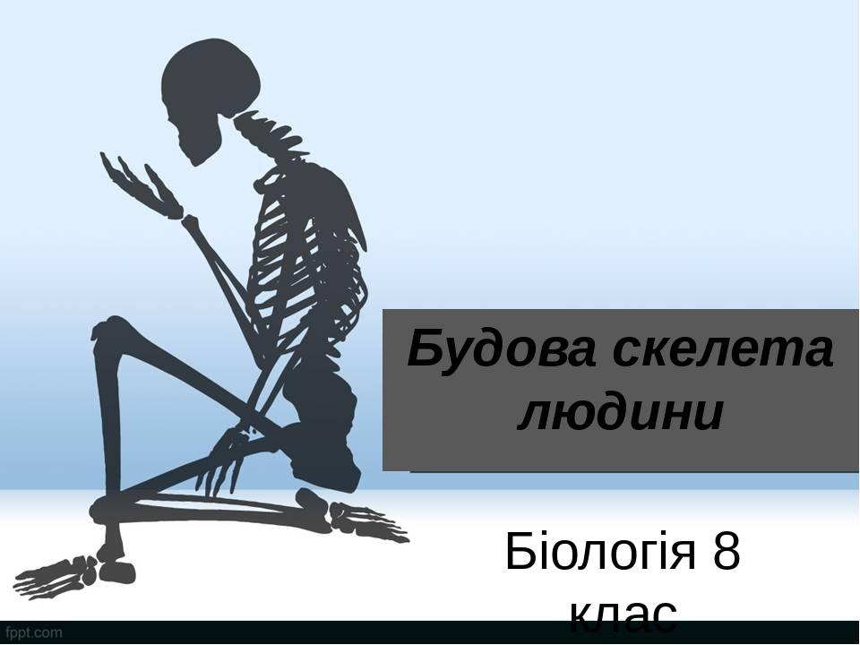 Будова скелета людини Біологія 8 клас