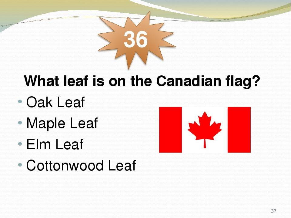 What leaf is on the Canadian flag? Oak Leaf Maple Leaf Elm Leaf Cottonwood Leaf *