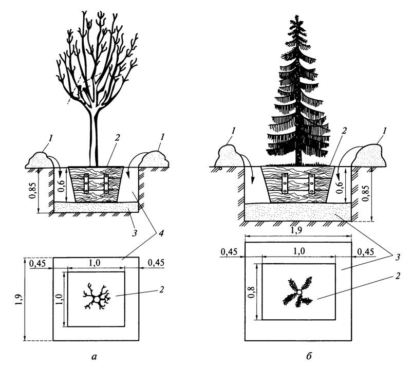 Методы выращивания леса 1