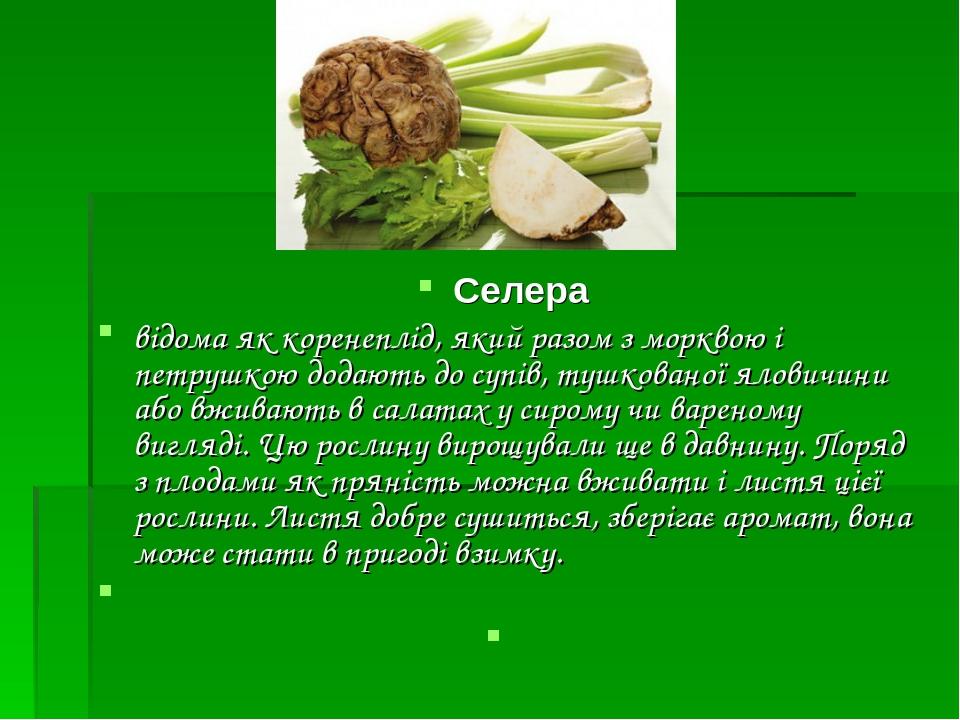 Селера відома як коренеплід, який разом з морквою і петрушкою додають до супів, тушкованої яловичини або вживають в салатах у сирому чи вареному в...