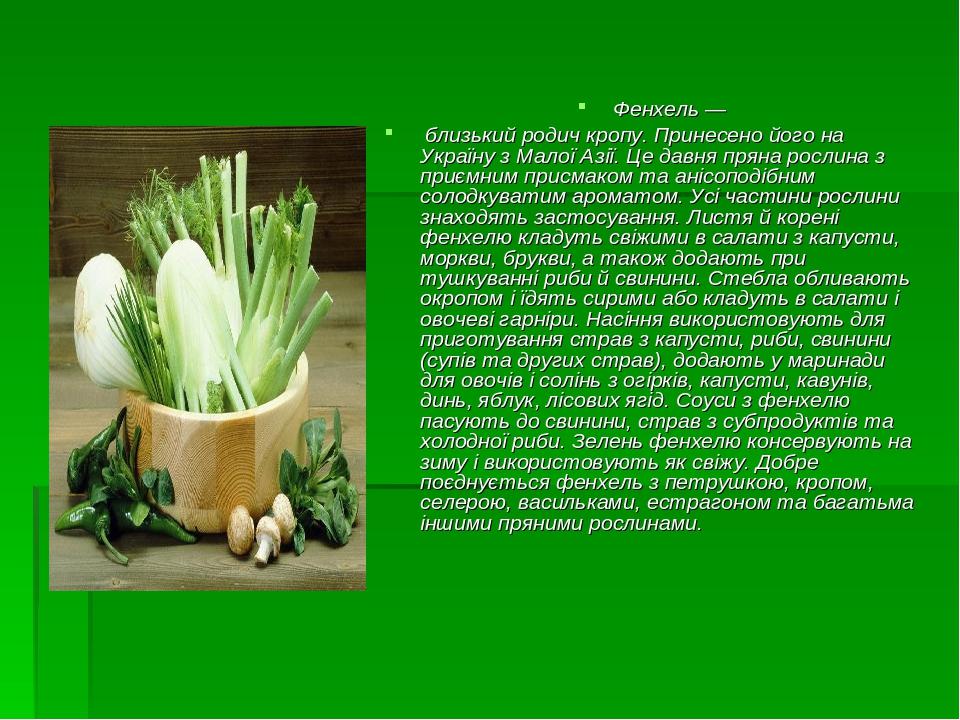 Фенхель— близький родич кропу. Принесено його на Україну з Малої Азії. Це давня пряна рослина з приємним присмаком та анісоподібним солодкуватим а...