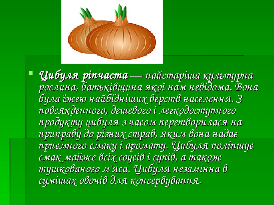 Цибуля ріпчаста— найстаріша культурна рослина, батьківщина якої нам невідома. Вона була їжею найбідніших верств населення. З повсякденного, дешево...