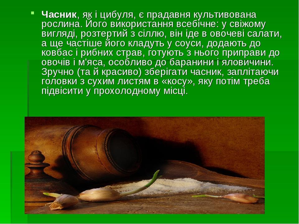 Часник, як і цибуля, є прадавня культивована рослина. Його використання всебічне: у свіжому вигляді, розтертий з сіллю, він іде в овочеві салати, а...