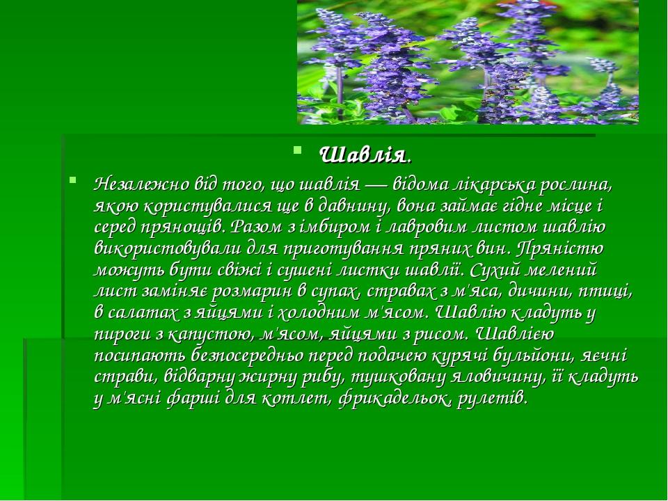 Шавлія. Незалежно від того, що шавлія — відома лікарська рослина, якою користувалися ще в давнину, вона займає гідне місце і серед прянощів. Разом ...