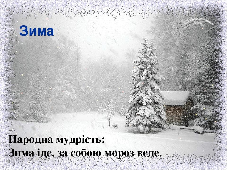 Зима Народна мудрість: Зима іде, за собою мороз веде.