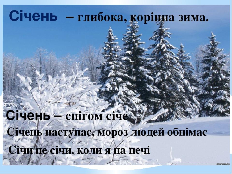 Січень – глибока, корінна зима. Січень – снігом січе Січень наступає, мороз людей обнімає Січи не січи, коли я на печі