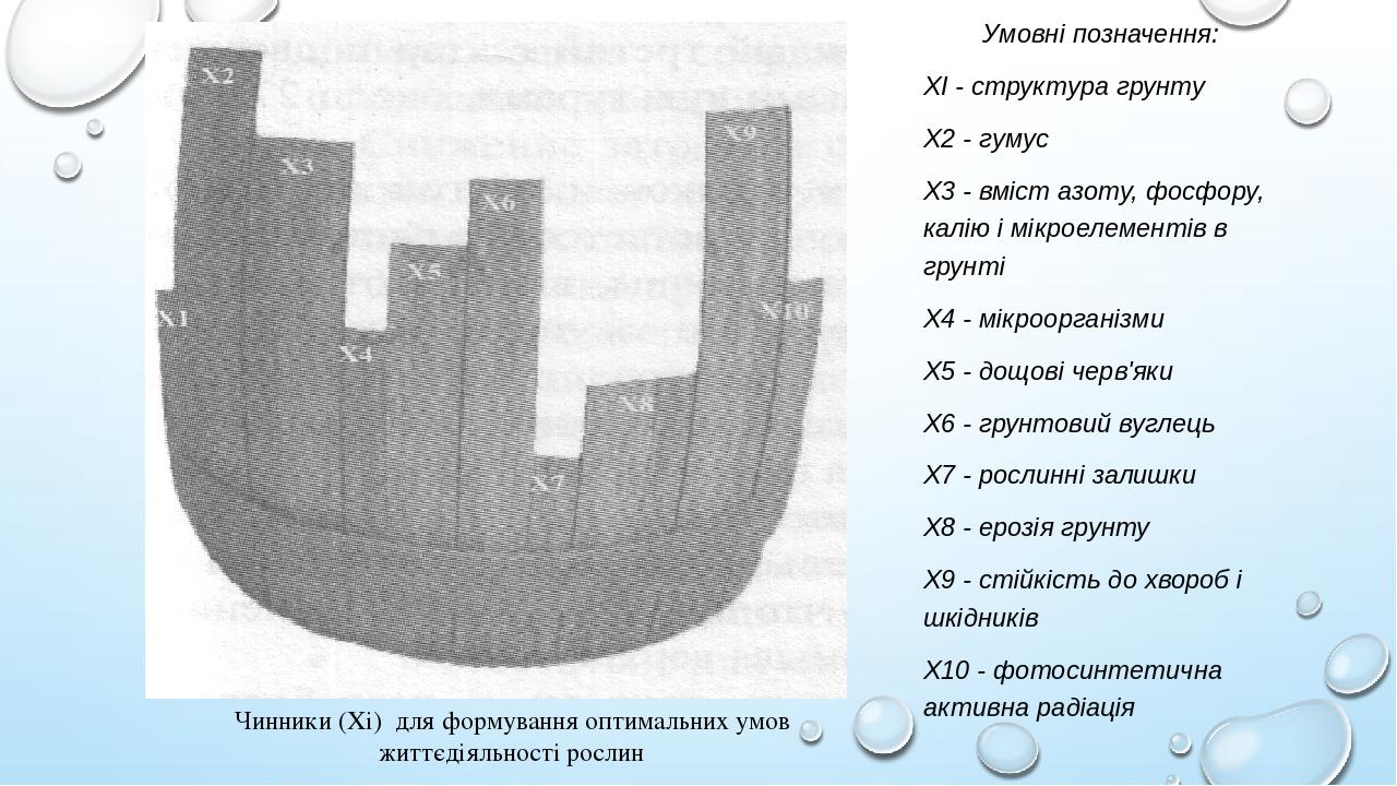 Чинники (Xі) для формування оптимальних умов життєдіяльності рослин Умовні позначення: XI - структура грунту Х2 - гумус Х3 - вміст азоту, фосфору, ...